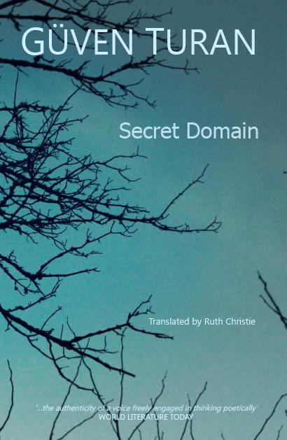 Secret Domain